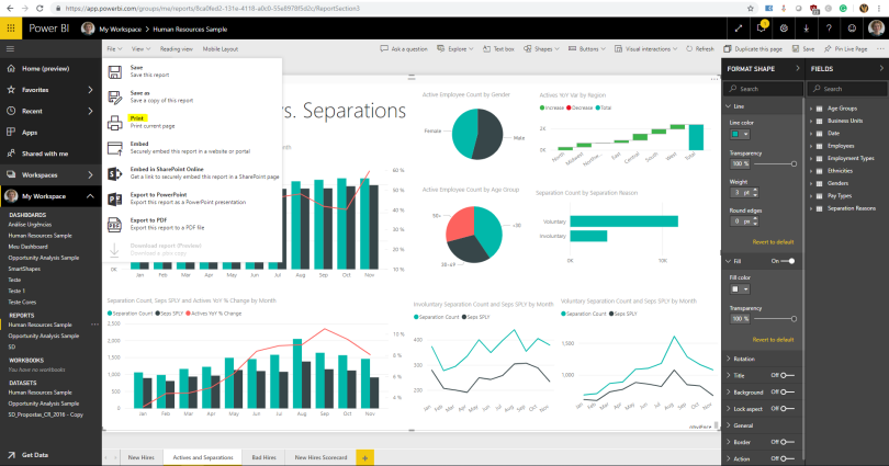 Power BI issue 3